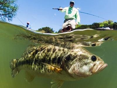 Пресноводная рыбалка на Кипре. Ловля басса с гидом