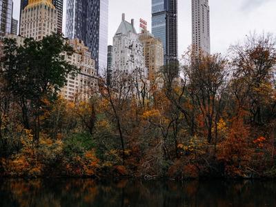 Онлайн-экскурсия «Нью Йорк — по следам кинофильмов»