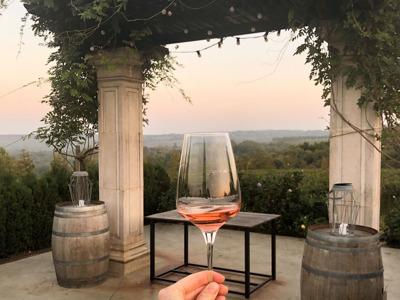 Индивидуальный тур по лучшим винодельням Кубани