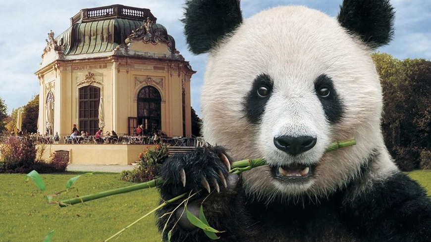Вена: Билет с проходом без очереди в зоопарк Шёнбрунн