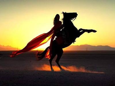 Прогулки на лошадях в Хургаде для новичков и опытых всадников.