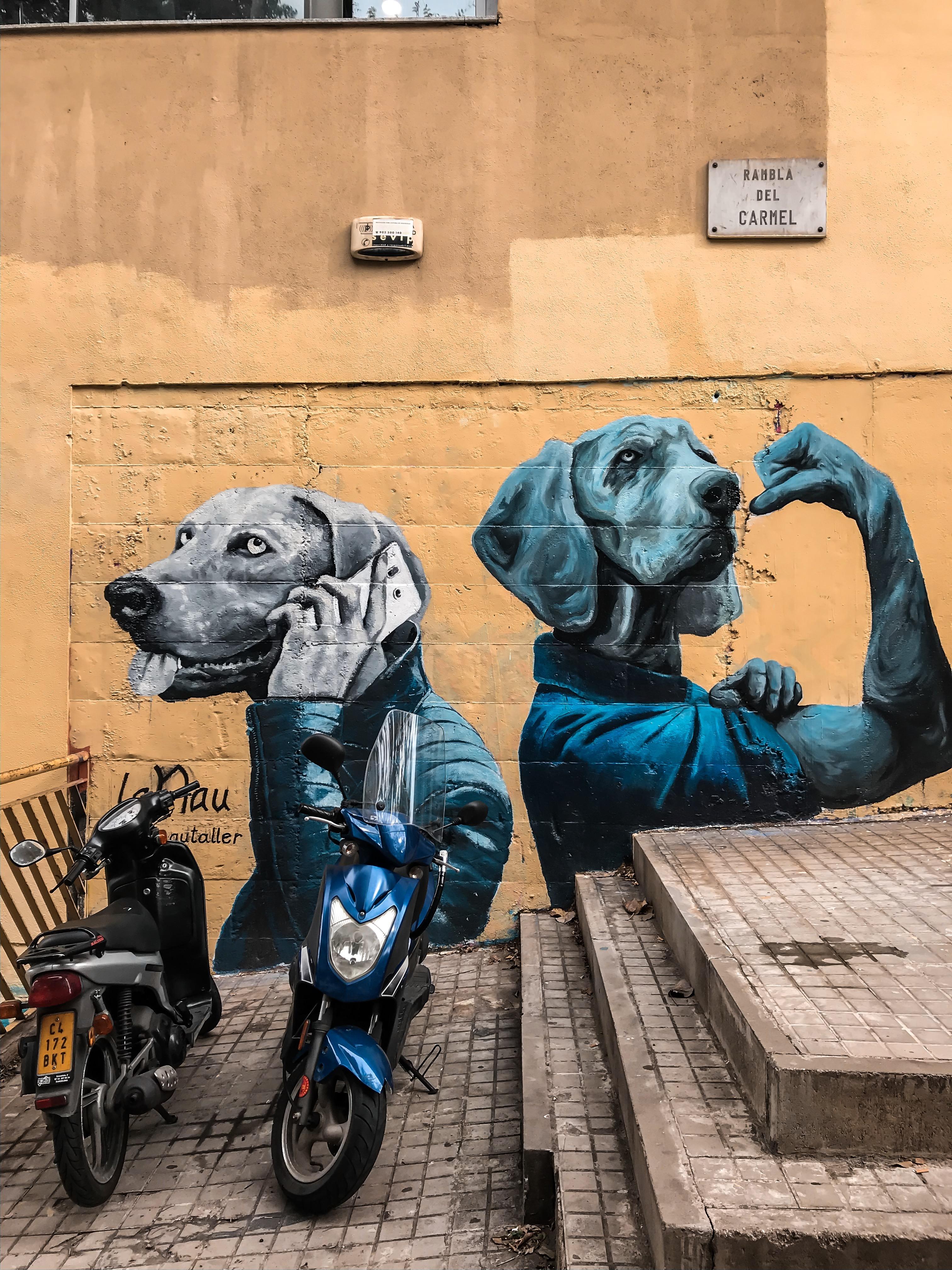 Онлайн-экскурсия на диване «Стрит-арт как имидж Барселоны»