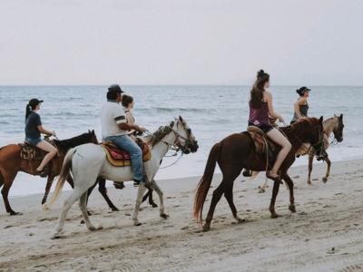 Прогулка на лошадях по пляжу и джунглям