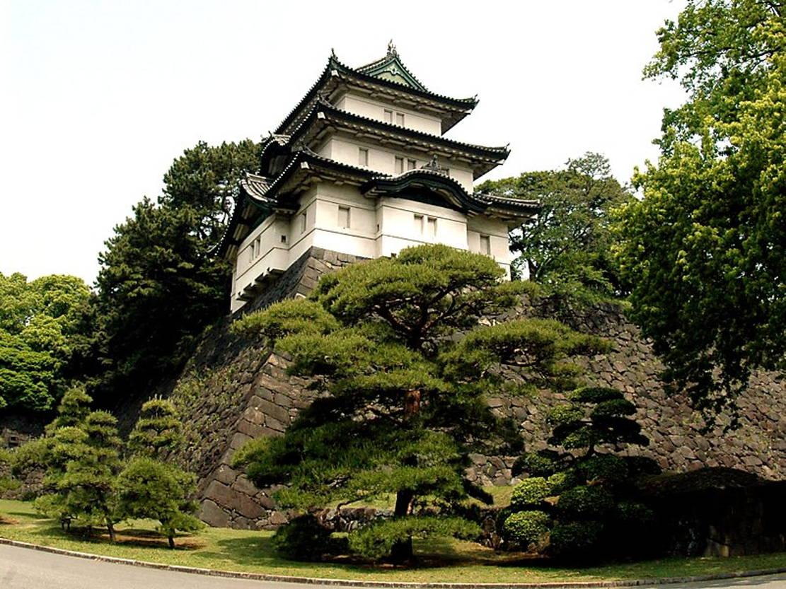 замок в токио фото изделие оказывает согревающий