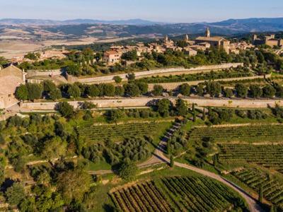 Дегустация Брунелло — великих вин территории Монтальчино