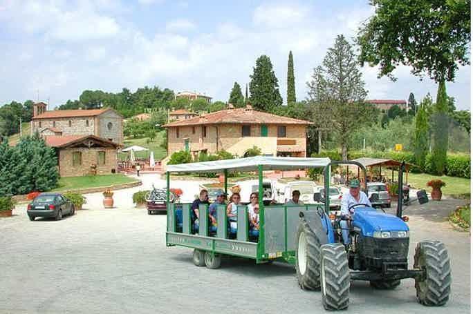 Увлекательная ферма в Пизе