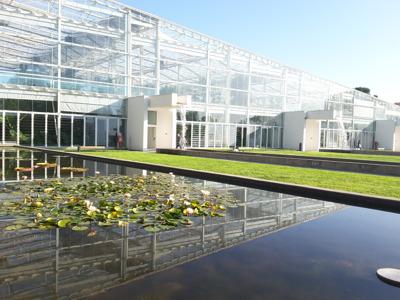 Ботанический сад Падуи + обзорная по городу