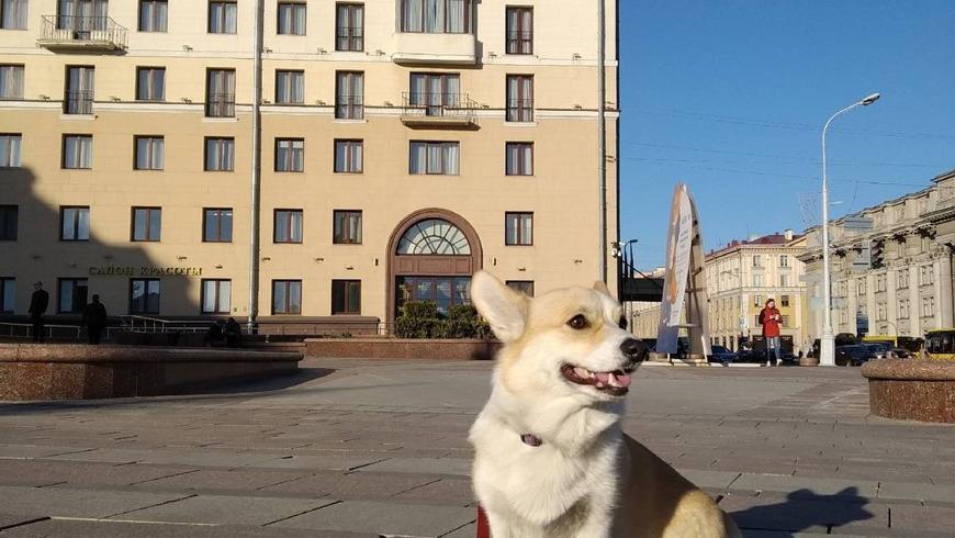 Индивидуальная пешеходная экскурсия по Минску