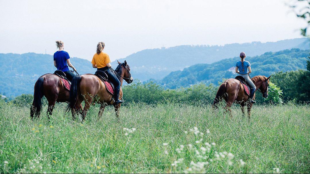 Экскурсии в Геленджике конные