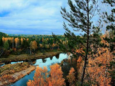 Оленьи ручьи: природный парк