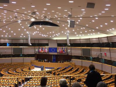 Брюссель - столица Евросоюза!