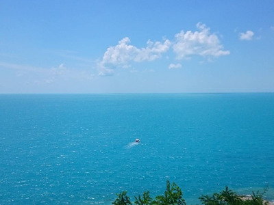 Тур на 1 день по черноморскому побережью
