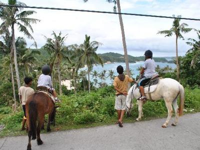 Конные поездки