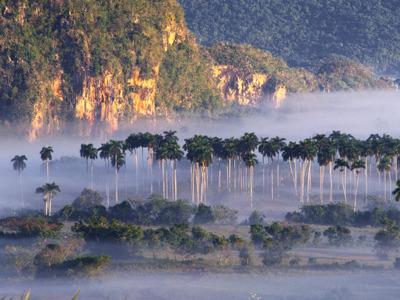 Обзорная экскурсия Сороа и долина Виньялес