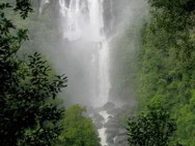 24. Восхождение на самый высокий водопад Вайрере. Из Окленда, Роторуа, Тауранга.