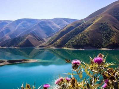 Озеро Кезеной-Ам — Шали — Аргун — Грозный