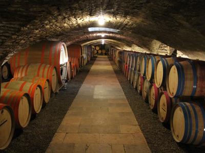Обзорная экскурсия по Бону и дорога вин Кот дё Бон(Côte de Beaune)