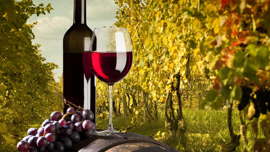 Вино и Баден