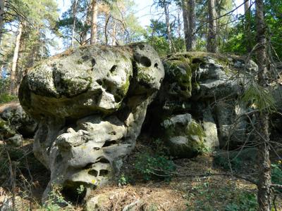 Автобусная экскурсия: «Каменные чудеса Рачейских лесов»