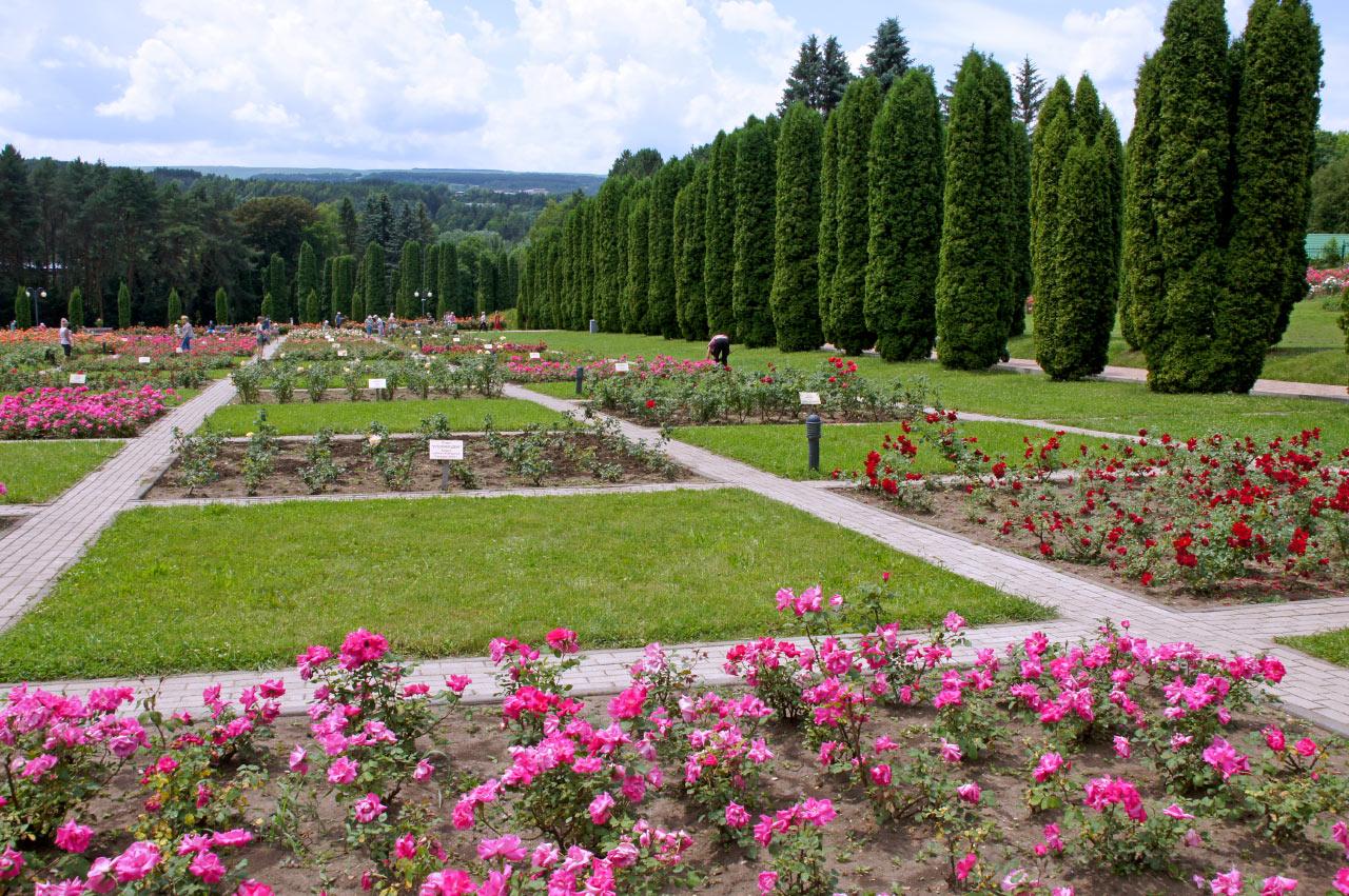 Долина роз в Кисловодске фото
