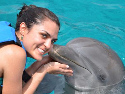 Дельфинарий и плавание с дельфинами