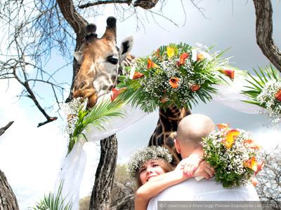 Свадьба в Кении