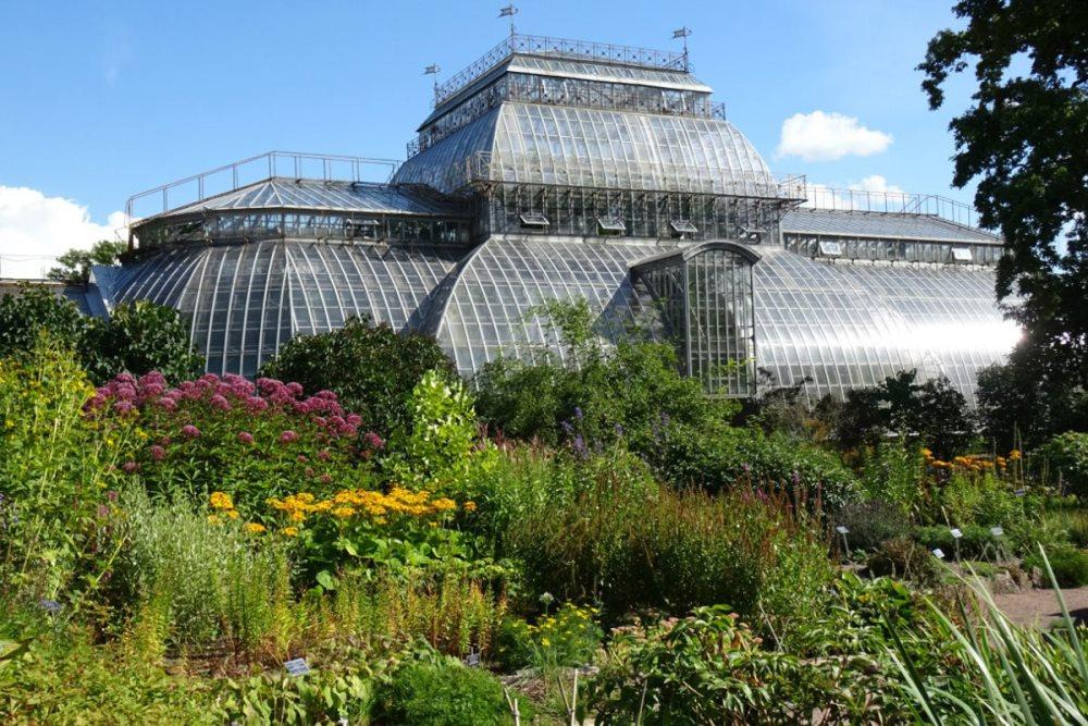 Фотография Ботанического сада