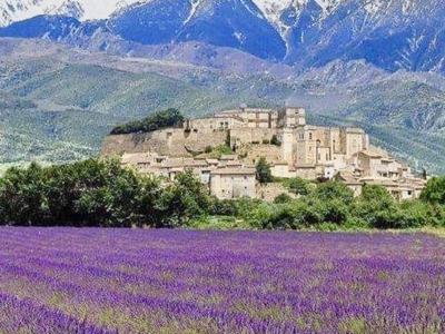 Самая романтическая экскурсия по лавандовым полям Прованса