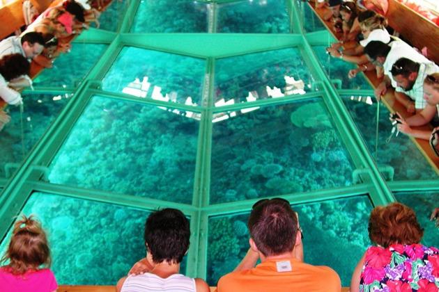 Лодка со стеклянным дном (временно не проводится)