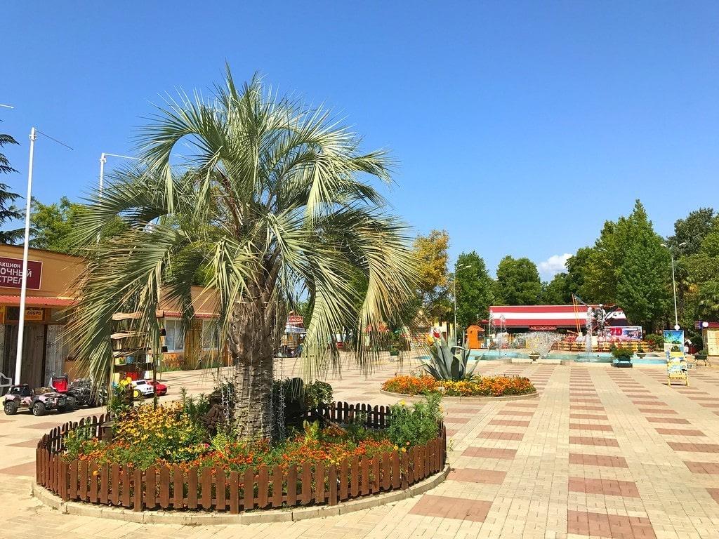 Парк культуры и отдыха фото