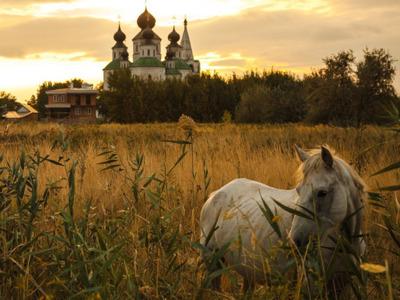 Индивидуальная экскурсия на автомобиле в Старочеркасск