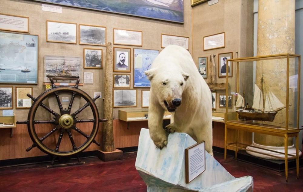 Фотография музея Арктики и Антарктики