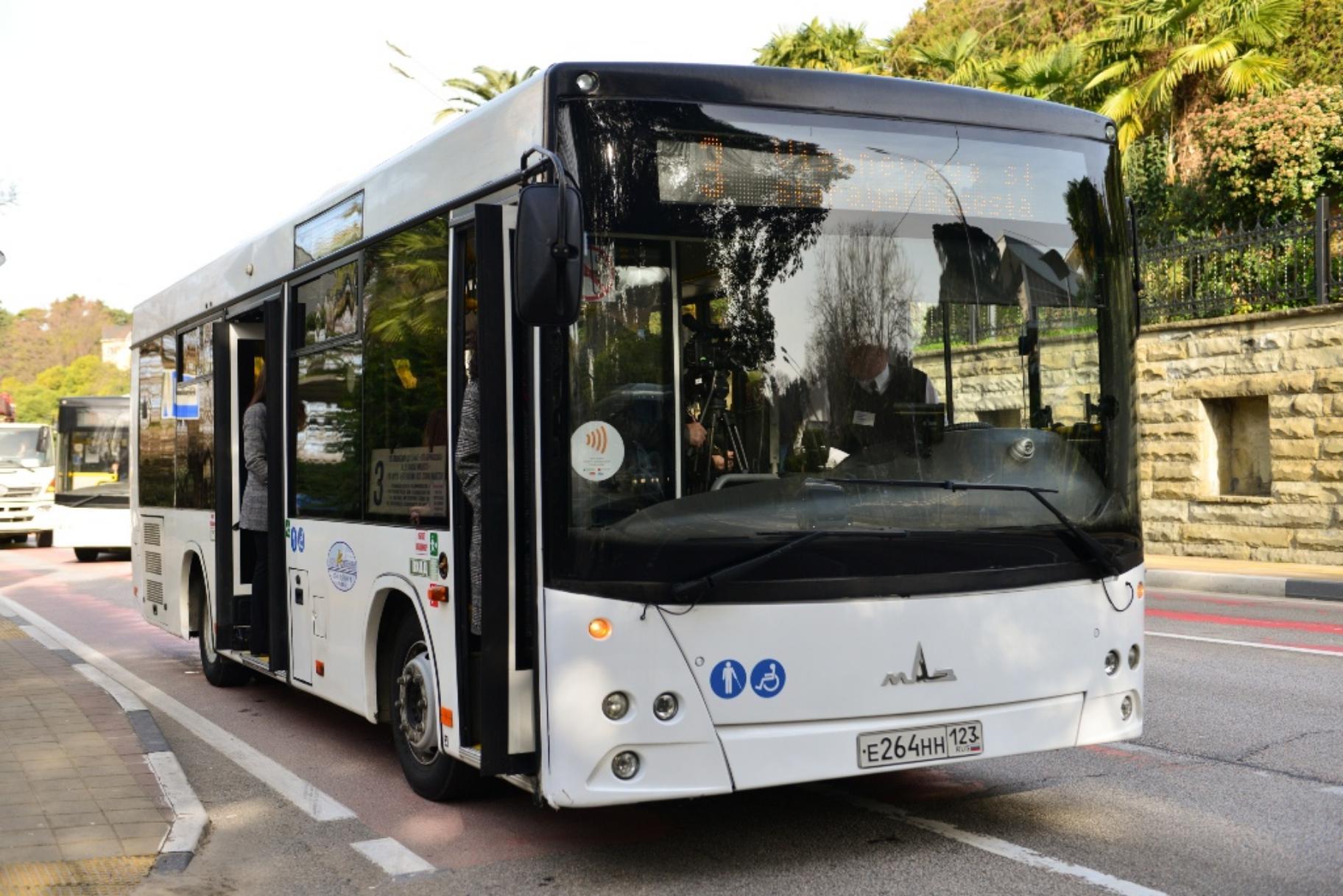 Как добраться из Адлера в Сочи на автобусе