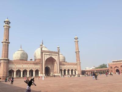 Удивительная обзорная экскурсия по Дели