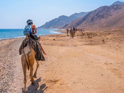 Шарм-эш-Шейх: сафари на верблюде и сноркелинг в Голубой дыре