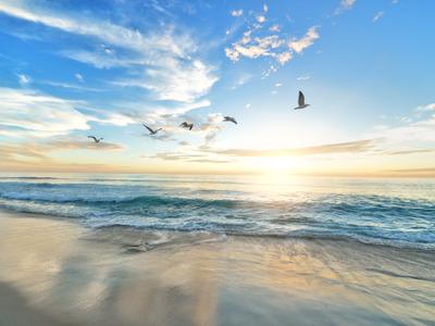 «Посейдон» на Азовском море: песчаный пляж и греческие грязевые ванны