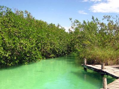 """Юкатан: заповедник ЮНЕСКО """"Сиан-Каан"""" и археологическая зона """"Муйиль"""""""
