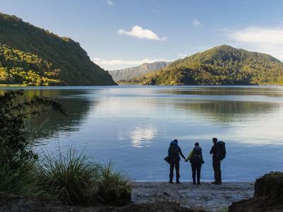 Онлайн-экскурсия «Солнечный Нельсон — жемчужина Новой Зеландии»
