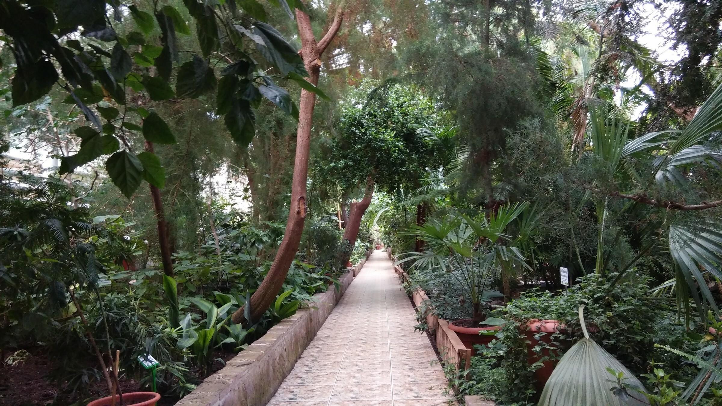 Фото ботанического сада в Уфе
