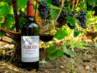 Экскурсия по винодельческому хозяйству с дегустацией вин